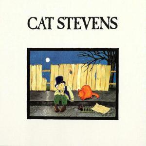 CatStevens